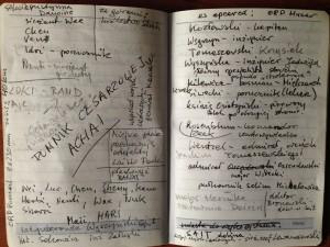 notatki do Pomnika cesarzowej Achai